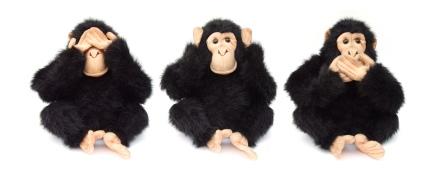 Los tres simios de la sabiduría la tienen clara, ¿o no?